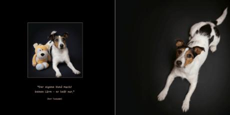 11.-Seiten-20-21 Hundebuch