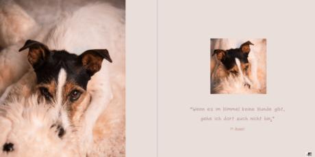 14.-Seiten-26-27Hundebuch