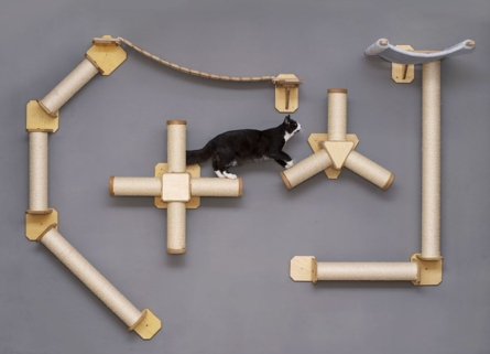 Katze-auf-Catwall