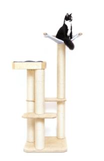 Katze auf Holzkletterbaum