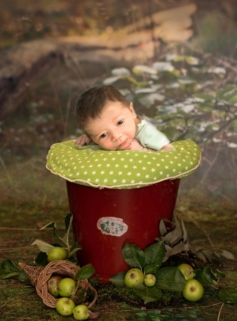 Neugeborenes-fotograf-sommer